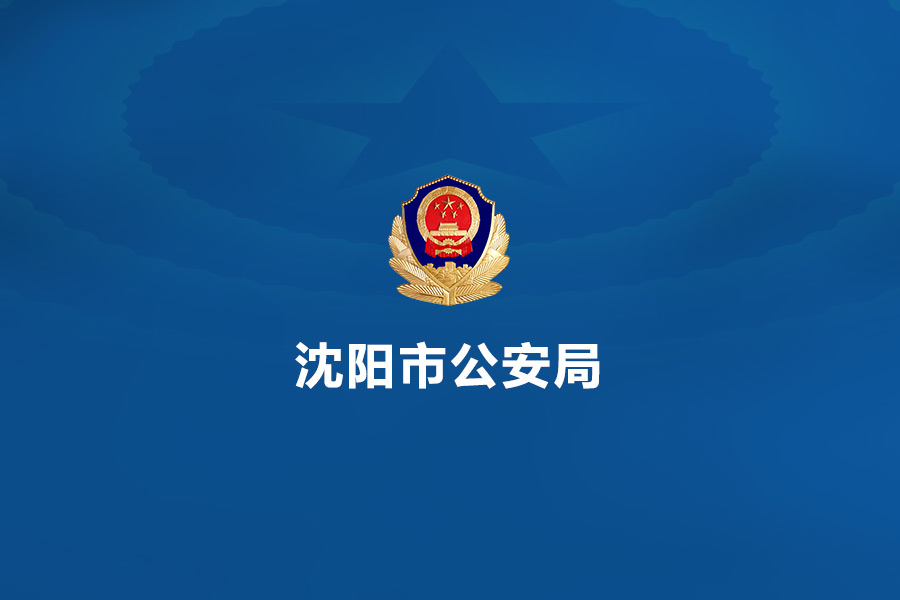 沙河沈阳公安局(内网)网站建设
